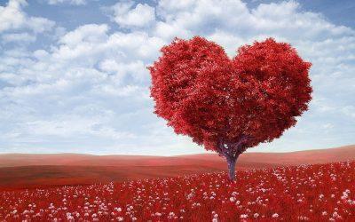 Last Minute Valentine's Day Date Ideas (For the Ballsy Procrastinators!)