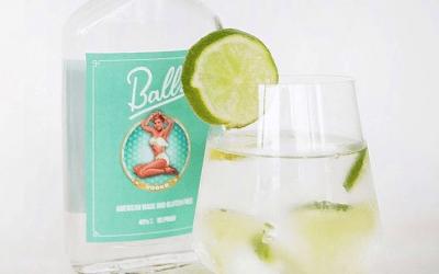 5 Positive Health Benefits of Vodka